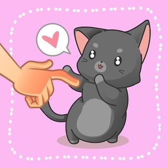 Ktoś dotyka małego kota.