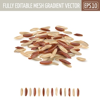 Kupie mieszany ryż długoziarnisty brązowy i czerwony na białym tle.