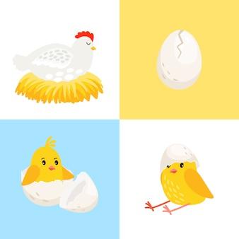 Kura i pisklę
