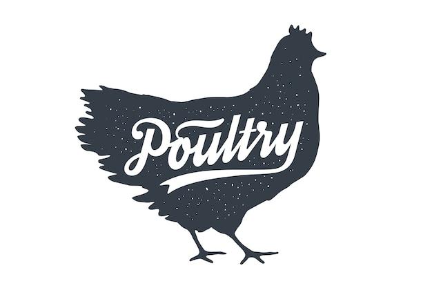 Kurczak, kura, drób. literowanie. vintage napis, sylwetka kurczaka kura z tekstem napisu drobiu.