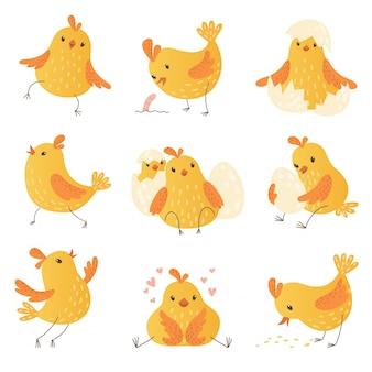 Kurczak z kreskówek. jajko śliczne żółte małe ptaki gospodarskie kolekcja zabawnych piskląt