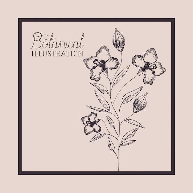 Kwadratowa ramka z narysowanymi kwiatami lilii