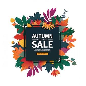 Kwadratowy baner z logo jesiennej sprzedaży. karta rabatowa na sezon jesienny z białą ramką i ziołem.