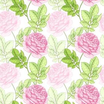 Kwiat bezszwowy wzór z różami.