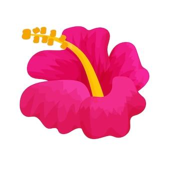 Kwiat głowy hibiskusa w stylu kreskówki na białym tle