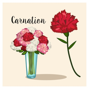 Kwiat goździka. wazon z kwiatami goździków. wektor