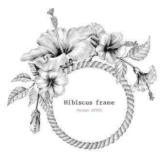 Kwiat hibiskusa rama ręka rysunek vintage