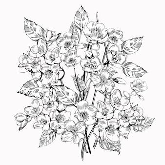 Kwiat jaśminu. vintage eleganckie kwiaty.