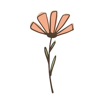 Kwiat na białym tle. streszczenie szkic botaniczny różowy i zielony kolor ręcznie rysowane w stylu doodle ilustracji wektorowych.