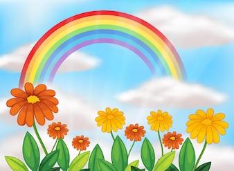 Kwiat ogród i piękna tęcza