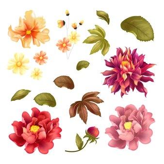 Kwiat pakiet wektor szablon kolorów