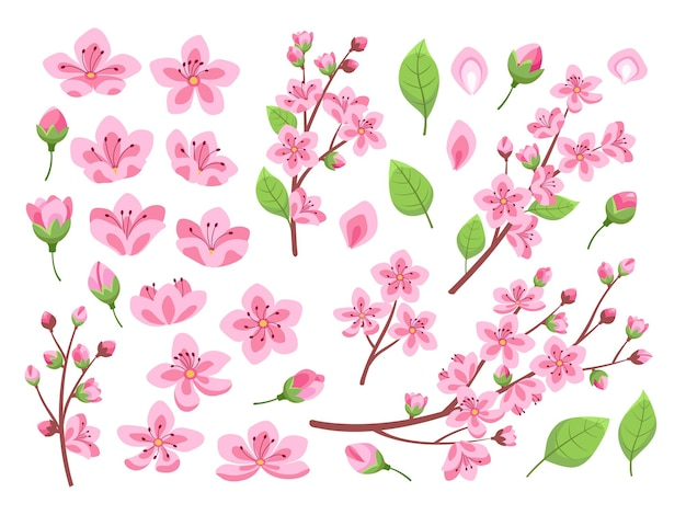 Kwiat sakury. azja wiśniowa, kwiaty brzoskwini. pojedyncze rośliny migdałowe w ogrodzie lub parku. różowy pączkujący płatek kwiatowy i gałęzie, zestaw liści. oddział wiosna kwiat kwiatowy kwiat ilustracja