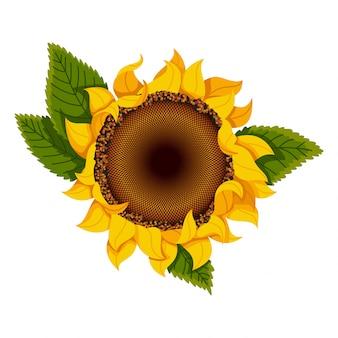 Kwiat słonecznika. ręcznie rysowane słonecznika z zielonymi liśćmi. ikona płaskiego koloru dla aplikacji i stron internetowych z kwiatami