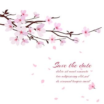 Kwiat wiśni, gałąź sakkury z różowymi kwiatami. szablon karty z pozdrowieniami