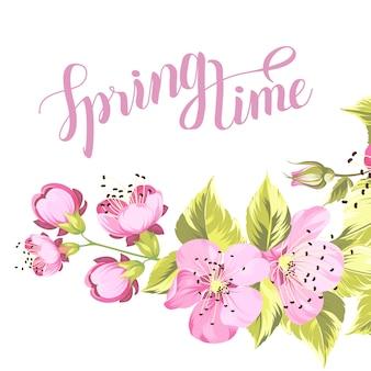 Kwiat wiśni na wiosnę.
