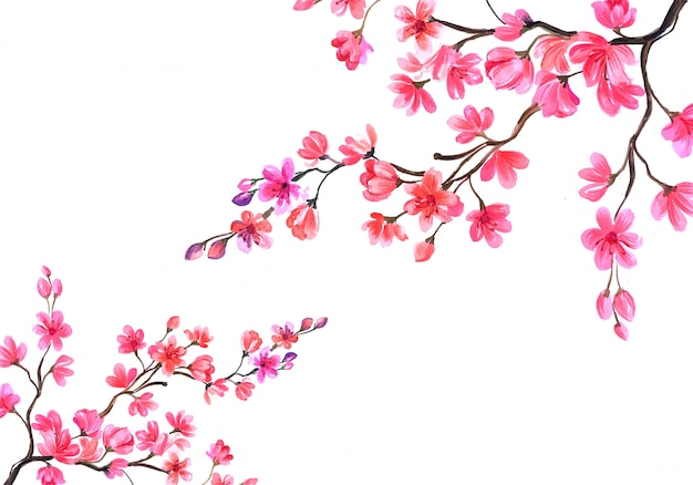 Kwiat wiśni w tle