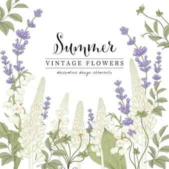 Kwiatowe ilustracje botaniczne, rysunki kwiatów lawendy i łubinu.
