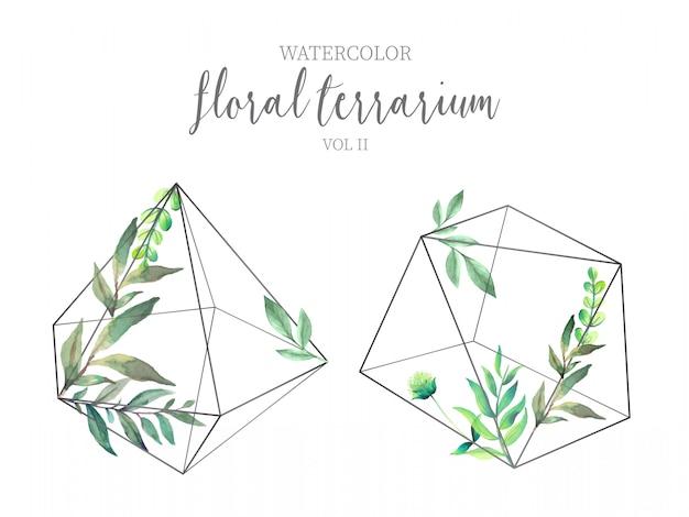 Kwiatowe terrarium z zielonymi liśćmi obj