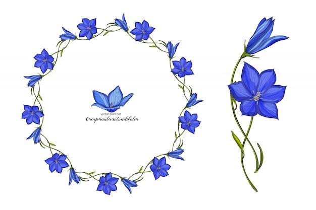 Kwiatowy dzwon wektor zestaw kwiatów. zestaw roślin kwiatowych