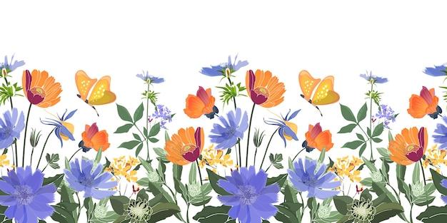 Kwiatowy granicy bez szwu. kwiaty letnie, liście zielone. cykoria, malwa, giliardia, nagietek, stokrotka piwonia. pomarańczowe, niebieskie kwiaty, motyle na białym tle.