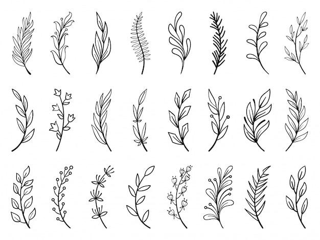 Kwiatowy oddział, wieniec ręcznie rysowane kwiat doodle zestaw linii, kolekcja pędzli roślin.
