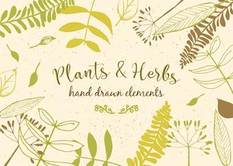 Kwiatowy tło. Vintage zaproszenie z różnych liści. Ilustracja botaniczna.