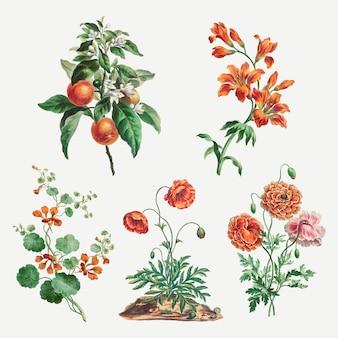 Kwiatowy zestaw do nadruków w stylu vintage, zremiksowany z dzieł johna edwardsa