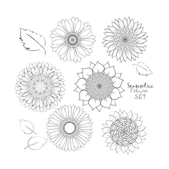 Kwiatowy zestaw symetrycznych kwiatów letnich. ręcznie rysowane doodle kwiat. ilustracja wektorowa konspektu
