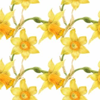 Kwiatowy żółty wzór z narcyzem