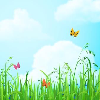 Kwiaty i trawa w polu niebo z chmurami