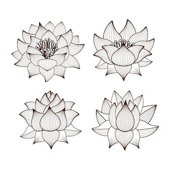 Kwiaty lotosu rysunek na białym tle ikona designu