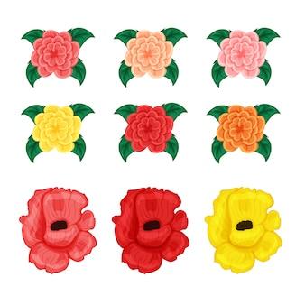 Kwiaty ustawiają róży i hibistus odizolowywających na białym tle