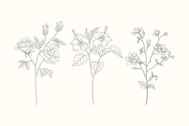 Kwiaty ustawić ręcznie rysowaną kolekcję