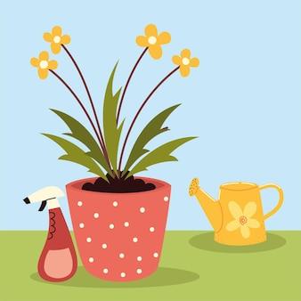 Kwiaty w doniczce i spray
