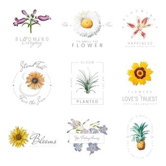 Kwiaty z cytatami