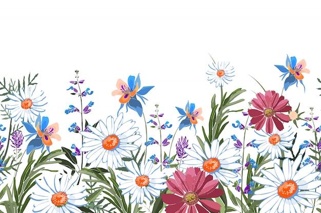 Kwiecista bezszwowa granica. letnie kwiaty, zielone liście. rumianek, akilegia, kolumbina, szałwia, rozmaryn, lawenda, nagietek, stokrotka oxeye. białe, niebieskie, różowe, fioletowe kwiaty ogrodowe na białym tle.