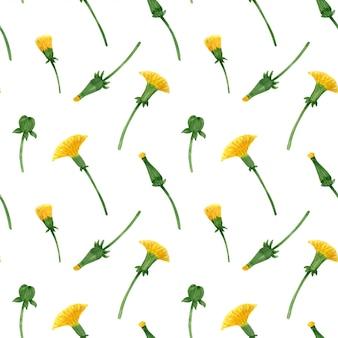 Kwiecisty bezszwowy wzór z dzikim dandelion