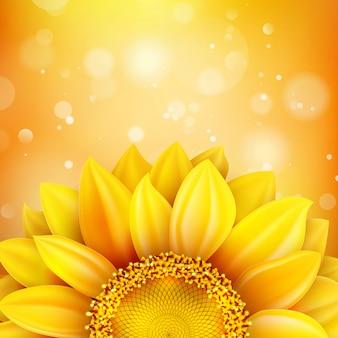 Kwiecisty jesień tło ze słonecznikiem.