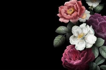 Kwitnący sztandar róż