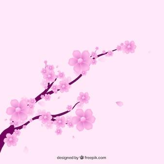 Kwitnąca gałąź, tło