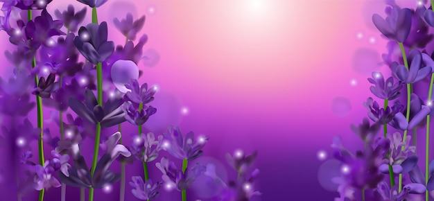 Kwitnące fioletowe pole lawendy. kwiaty lawendy błyszczą w słońcu. ilustracja z perfumami, produktami zdrowotnymi, ślubem. prowansja, francja.