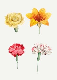 Kwitnące kwiaty mieszane