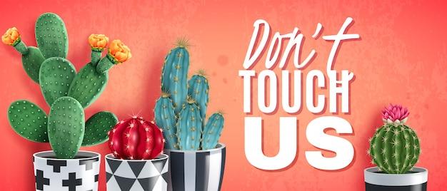 Kwitnące odmiany kaktusów w ozdobnych czarno białych doniczkach na modnym koralowym realistycznym poziomym plakacie