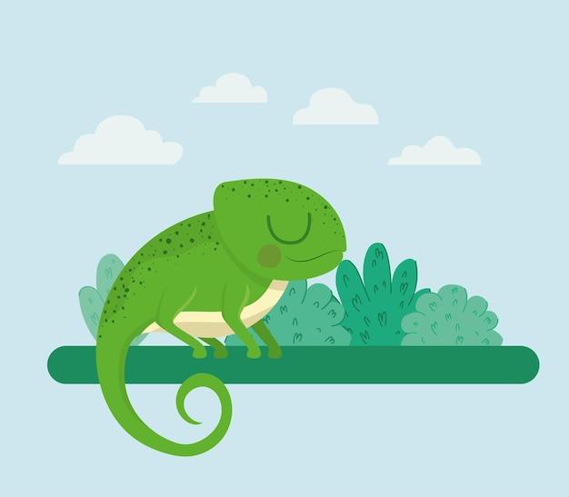 Ładna ilustracja iguany