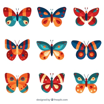 Ładna kolekcja kolorowych motyli