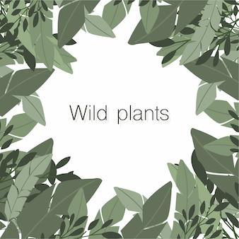 Ładna kompozycja dzikich roślin z copyspace w centrum