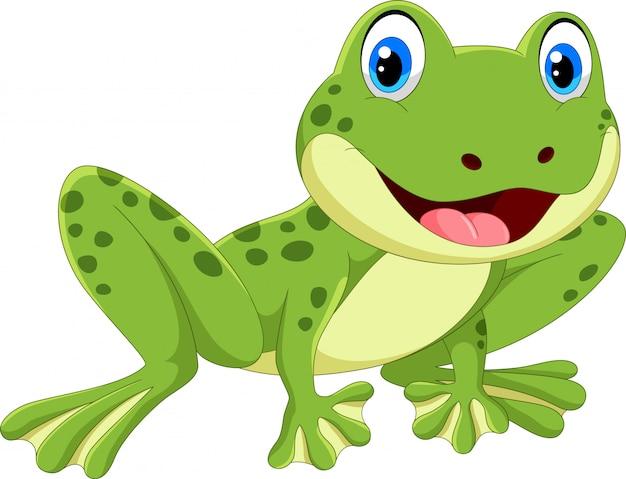 Ładna żaba kreskówka