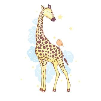Ładna żyrafa na białym tle