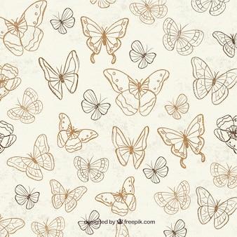 Ładne tło z ręcznie rysowanych motyli