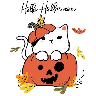 Ładny biały kot z pomarańczowym jesiennym opadaniem liści dyni